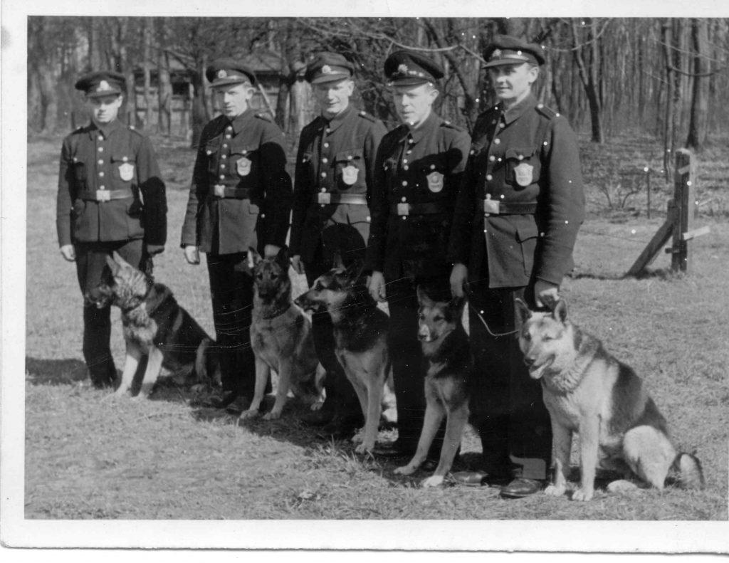 """1946 - Polizeiwachtmeister Hülsmeier (1. v. r.) mit Diensthund """"Ex von Bollingwalde"""" Polizeiarchiv Delmenhorst"""